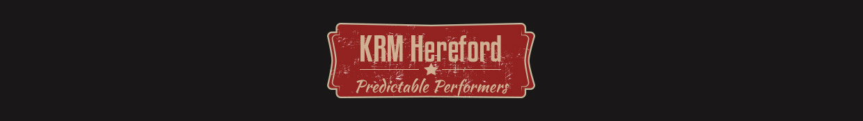 KRM Hereford Awards & Achievements